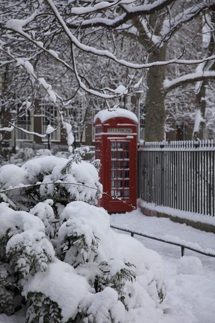 Snowy32HighRes